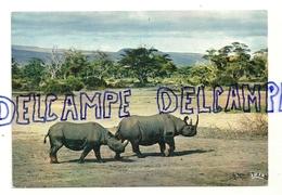 Faune Africaine. Rhinocéros. Mexichrome. Editions HOA-QUI 4062 - Rhinocéros