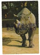 Rhinocéros ANCO 1/85 - Rhinocéros