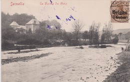 JEMELLE - Jemeppe-sur-Sambre