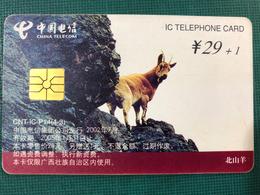 CHINA TELECOM IC TELEPHONE CARD - Chine