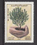 1995 Syria Arbor Day Hand Holding Tree Seedling Set Of 1 MNH - Siria