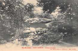 DOLMEN Et MENHIRS -  Dolmen Chevresse  à SAINT BRISSON - Dolmen & Menhirs