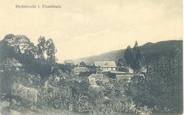 Hedderode I. Usambara CP - Tanzania