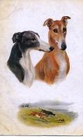 "Norah Drummond  -  ""Sporting Dogs"" : Greyhounds   -     8669 - Honden"