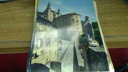Cartolina:Urbino Viaggiata (a32) - Non Classificati