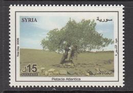 2006 Syria Arbor Day, Tree Set Of 1 MNH - Syria