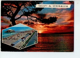 U4105 Cartolina 1971 SENIGALLIA (ancona) Saluti Da... + Tramonto Sunset Coucher _ Ed La Rocca N. 30 / 60019 @ Trimboli - Italia
