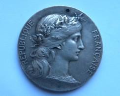 Médaille Bronze Argenté Diam 4,5 Cm - Graveur D DUPUIS Offert Par Jules Elby Sénateur Du Pas De Calais (1857-1933) - Médailles & Décorations