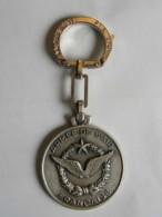 Insigne Militaire - Armée De L'Air - SIRPA - Airforce