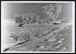 C0149 - Foto - Winterlandschaft Schnee Schneelandschaft - Fotografie