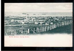 CHILE Punta Arenas (Sandy Point) Ca 1900 OLD POSTCARD 2 Scans - Cile