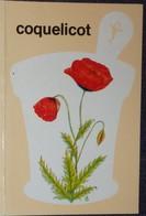 Petit Calendrier De Poche 1979 Coquelicot Fleur - Pharmacie Limoges - Calendriers