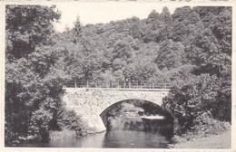 La Lesse, Le Pont Des Barbouillons (pk53054) - Daverdisse