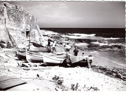 FR-20B: ALGAJOLA: Le Port De Pêche - Francia