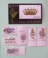 Flowers St. Kilda Sccotland 1990 - Non Classificati