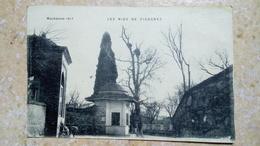 CPA. LE NID DE CIGOGNES 1917 MACEDOINE - DELEY  - GUERRE 1914-1918 - écrite 1918 - Macédoine