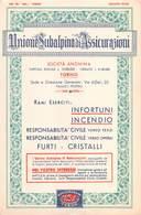 """07600 """"CARTA ASSORBENTE UNIONE SUBALPINA ASSICURAZIONI - TORINO"""" ORIG. - Formato Piccolo : 1941-60"""