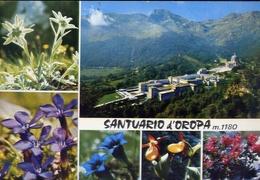 Santuario D'oropa - 98-048 - Formato Grande Viaggiata – E 9 - Vercelli