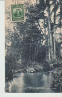 C.P.A. - RÉPUBLIQUE DE CUBA - PUENTES GRANDES - PAISAJE - BAMBOO - CANE TREES - 52 - - Postcards