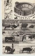 C.P.A. - PHOTO -  CORRIDA DE TOTOS - ESPANA - MULTIVUES - - Corrida