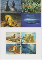 United Nations - MK 97 - Mi 526-5229 Endangered Species - Northern Elephant Seal - Sea Ginger - Spiny Seahorse 2008 - Maximumkaarten