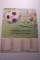FLASSANS-sur-ISSOLE   -  ETOILE SPORTIVE  FLASSANNAISE  - CALENDRIER 1974 - FOOT- BAL - Calendriers