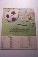 FLASSANS-sur-ISSOLE   -  ETOILE SPORTIVE  FLASSANNAISE  - CALENDRIER 1974 - FOOT- BAL - Calendars
