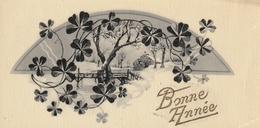 Carte Postale Ancienne Fantaisie - Mignonette - Fleurs - Paysage - Bonne Année - Fantasia