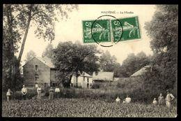 51 HAUVINÉ - Le Moulin - France
