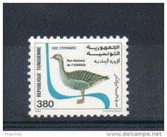 Tunisie. Oie Cendrée - Tunisie (1956-...)