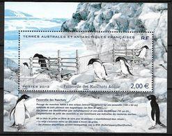 TAAF 2012 Bloc N° F638 Neuf Manchots - Blocks & Sheetlets