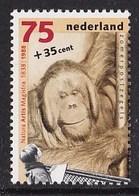 Nederland - Mens En Dierentuin - Orang-oetan - MNH - NVPH 1401 - Apen