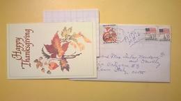 1987 BUSTA AIR MAIL BOLLO USA 22C ANNULLO TAMPA PER ITALY CON LETTERA CARTONCINO HAPPY THANKSGIVING - Storia Postale