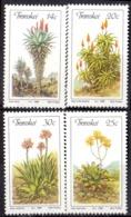 TRANSKEI - Aloès 1986 - Transkei