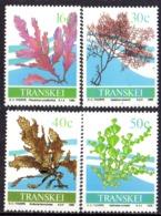 TRANSKEI - Flore Marine - Transkei