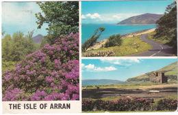 The Isle Of Arran: Rhododendrons At Brodick, Lochranza Castle, Catacol Bay  - (Scotland) - Bute