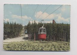 Wurmbergseilbahn - CABINE De TÉLÉPHÉRIQUE - Pentes En été - BRAUNLAGE - Allemagne - Wintersport