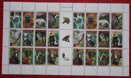 Surinam / Suriname 2006 Complete Sheet Apen Primates Affen Monkey Singes (ZBL 1406 -1417 Mi 2077-2088) POSTFRIS / MNH ** - Surinam