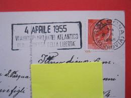 A.01 ITALIA ANNULLO TARGHETTA - 1955 BOLOGNA 4 APRILE ANNIVERSARIO PATTO ATLANTICO DIFESA DELLA LIBERTA' - Militaria