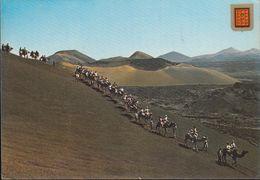 Spanien - Lanzarote -  Caravan To The Mountain - Nice Stamp - Lanzarote