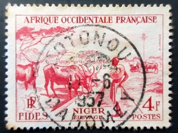 France - Afrique A.O.F - élevage Au Niger - 4 Frs Rose -carminé -Oblitération COTONOU . DAHOMEY 1957 - A.O.F. (1934-1959)