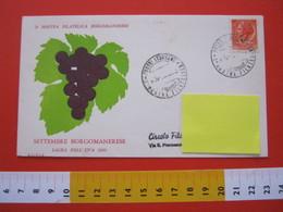 A.01 ITALIA ANNULLO - 1960 BORGOMANERO NOVARA 1^ MOSTRA FILATELICA SETTEMBRE BORGOMANERESE UVA VINO VIN - Agriculture