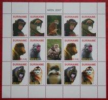 Surinam / Suriname 2007 Apen Primates Affen Monkey Singes Complete Sheet (ZBL 1481-1486 Mi 2152-2157) POSTFRIS / MNH ** - Surinam