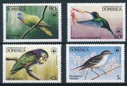WWF - DOMINICA  - BIRDS   -  1984 - 4  V. -MNH  - - W.W.F.