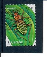 Yt 5150 Carabe Insectes - France