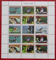 Surinam / Suriname 2008 Birds Vogels Oiseaux Pajaros Complete Sheet (ZBL 1570-1575 Mi 2244-2249  Sc -) POSTFRIS / MNH ** - Surinam