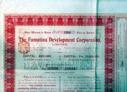 THE FAMATINA DEVELOPMENT CORPORATION (titre De 5 Actions) 1906 - Shareholdings