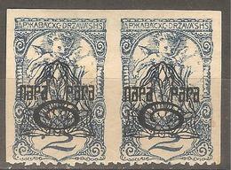 1920 - SHS Novinska Sa Pretiskom 6 Na 2 Vinara U Paru MH - Slovénie