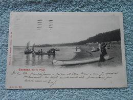 Cpa Canada Quebec Cacouna Sur La Plage 1904 - Quebec
