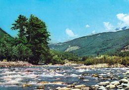 1 AK Indien * Landschaft Bei Der Stadt Pahalgam (auch Phal-Gham) Im Bundesstaat Jammu Und Kaschmir * - India